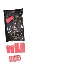 Geschenktüte mit Klebeverschluss (20 x H 31 cm.)