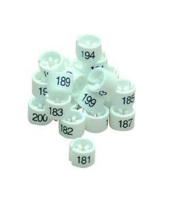 Mini Größenreiter - Intervall - Weiß